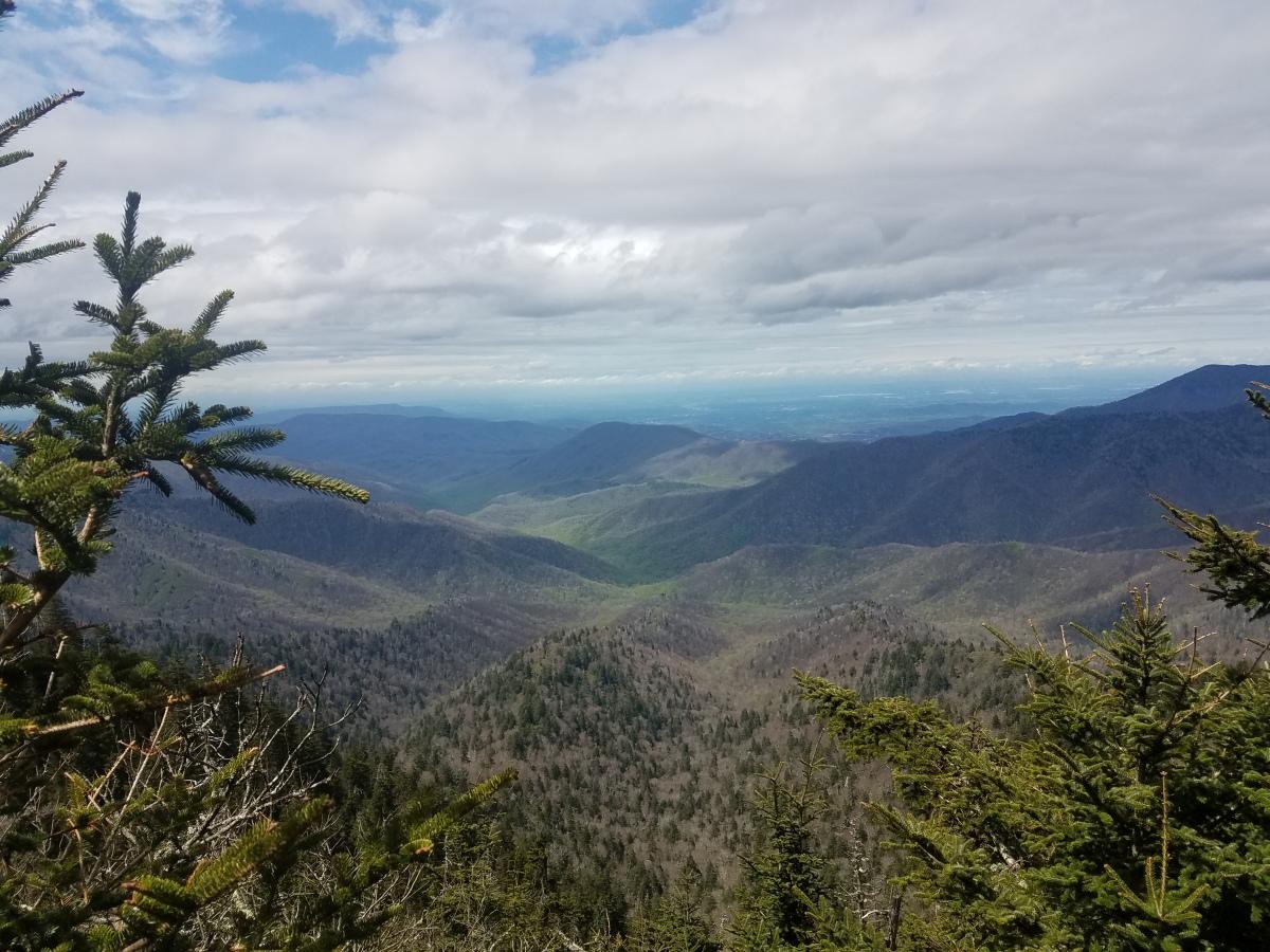 270 miles on the Appalachian Trail: Far over misty mountainscold